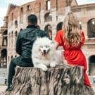 Il cane nella coppia: come migliorare la vostra convivenza