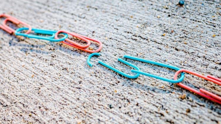 Andare a convivere dopo il divorzio: affrontare una seconda convivenza. Intervista a Stefania