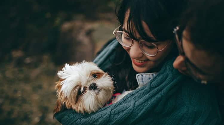 Prendere un cane in convivenza: il migliore amico della coppia